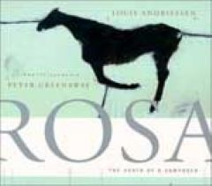 ROSA: The Death of a Composer  (1993-94)