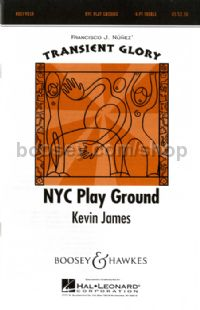NYC Play Ground SSSS, trumpet, percussion & CD