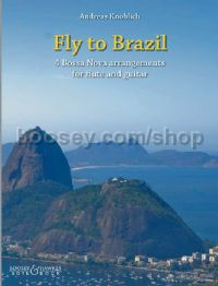 Fly to Brazil