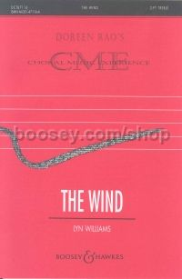 The Wind SS & piano