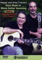 Easy steps to blues guitar jamming 2 DVD