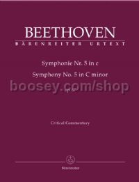 Symphony No.5 in C Minor, Op.67 (Critical Commentary)